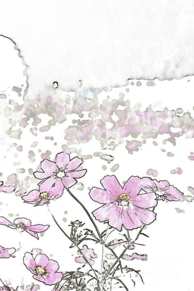 Beautiful Park Drawing - Pen Sketching Fully Bloomed Colorful Cosmos On Mountain Landsca by Eiko Tsuchiya