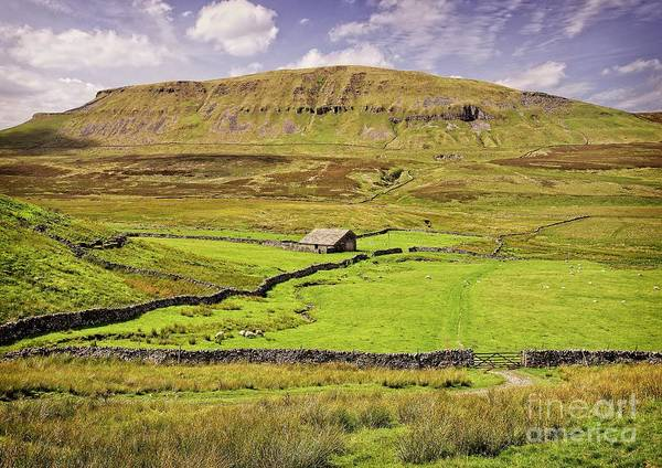 Photograph - Pen-y-ghent Yorkshire Dales by Martyn Arnold