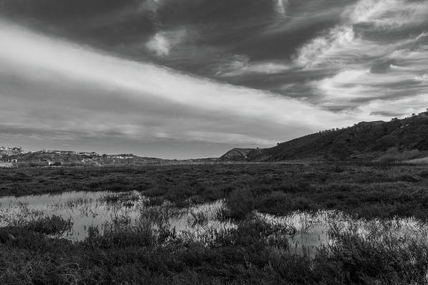 Photograph - Penasquitos Creek Marsh by TM Schultze