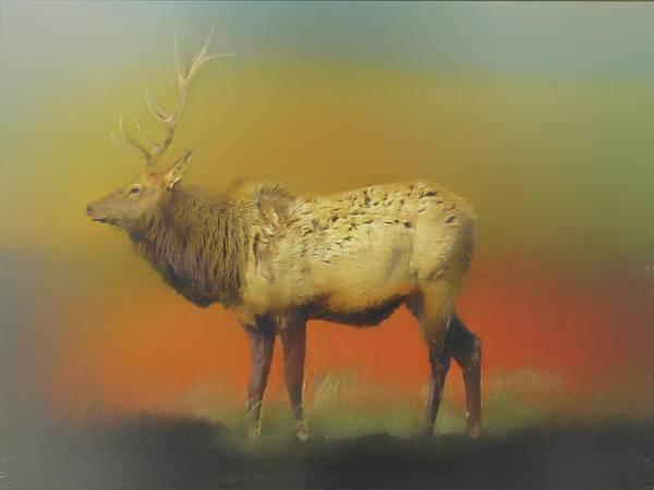 Digital Art - Pennsylvania Bull Elk by Rusty R Smith