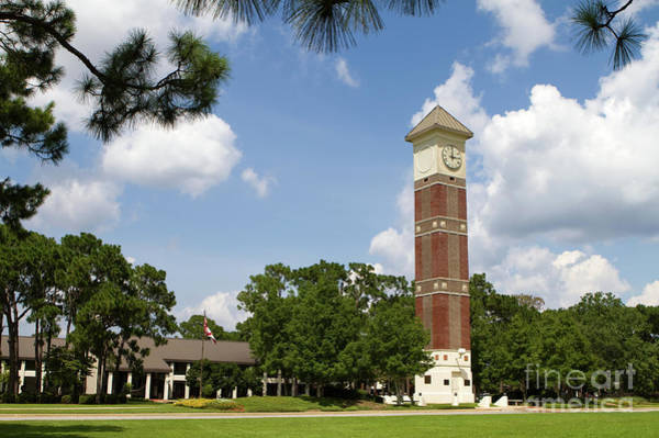 Photograph - Pensacola State College by Steven Frame