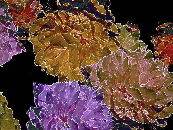 Digital Art - Peonies Adrift 31 by Lynda Lehmann