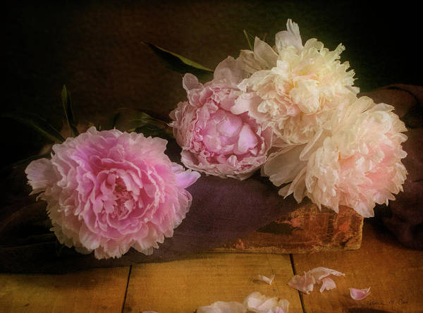 Photograph - Peonies On Book by Bellesouth Studio