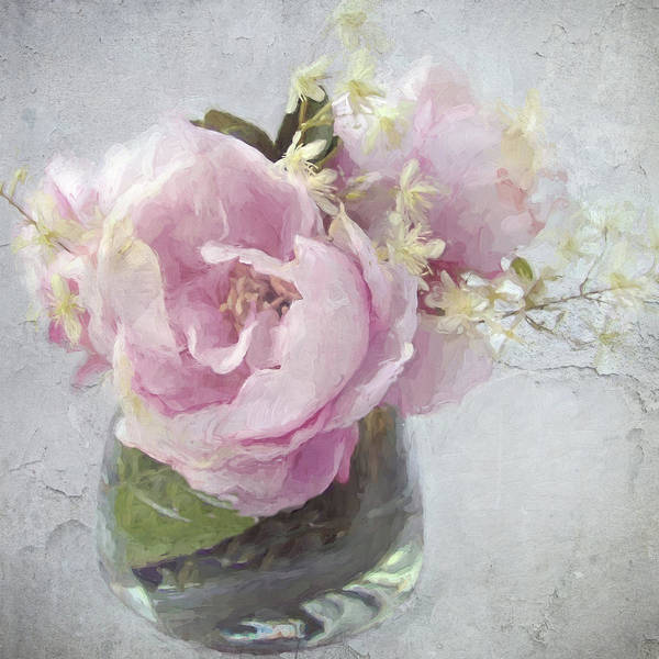 Photograph - Peony 2 by Karen Lynch