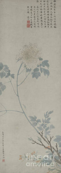 Wall Art - Painting - Peony, Hanging Scroll, 1532 by Wen Zhengming