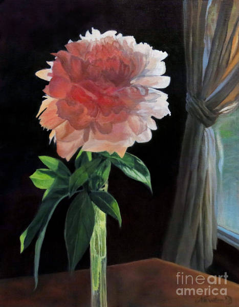 Wall Art - Painting - Peony by Jeanne Newton Schoborg