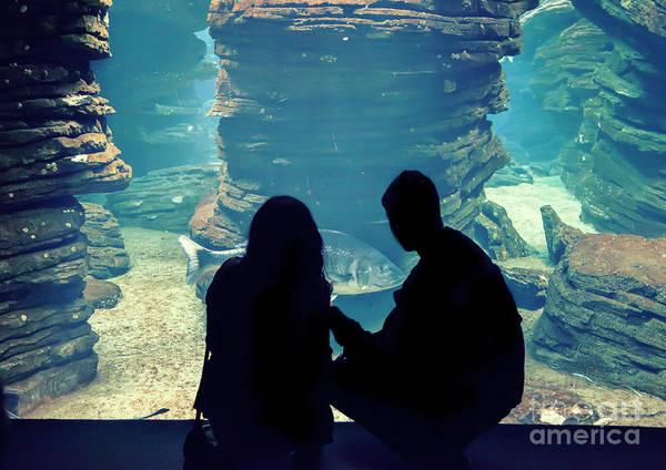 Photograph - People In Oceanarium  by Ariadna De Raadt