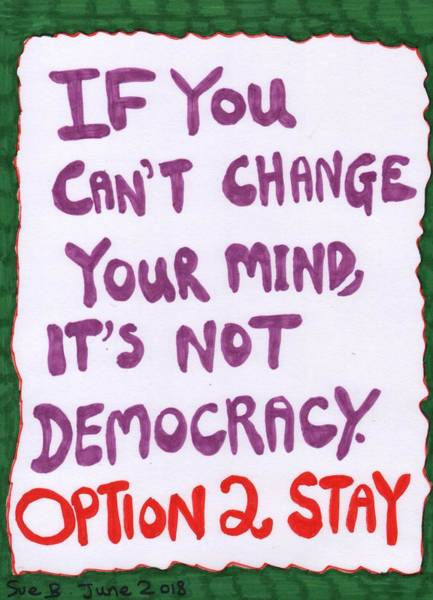Options Drawing - Peoples Vote If You Cant Change Your Mind Its Not Democracy by Sushila Burgess