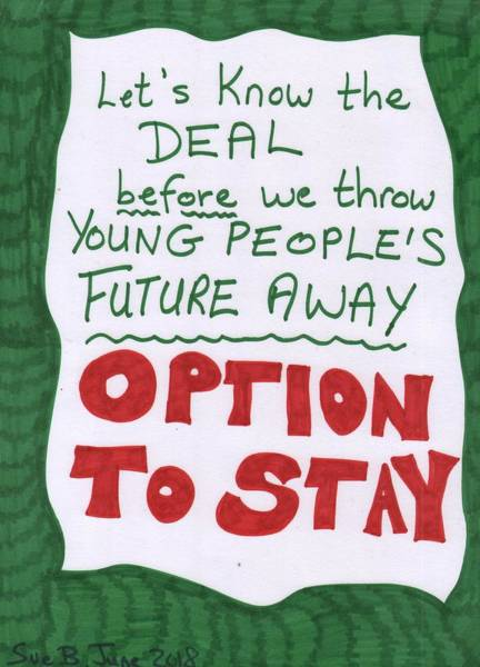 Options Drawing - People's Vote Option To Stay Young People Need A Future by Sushila Burgess
