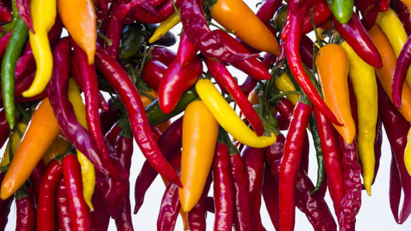 Photograph - Peppers - Farmers Market - Madison - Wisconsin by Steven Ralser