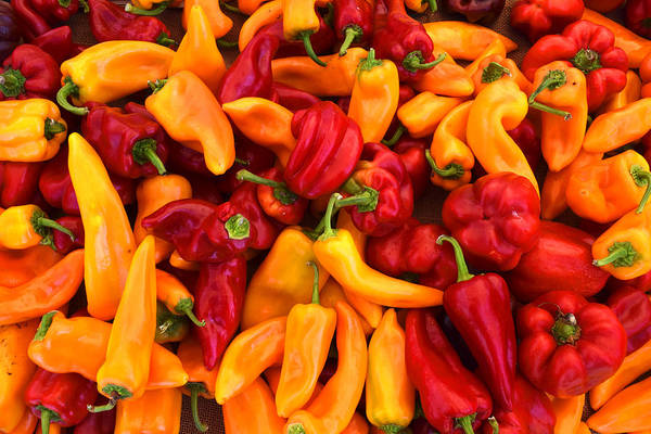 Photograph - Peppers by Frank Wilson