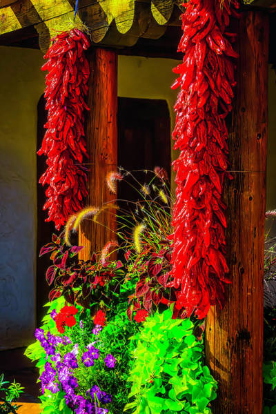 Wall Art - Photograph - Peppers Hanging In The Garden by Garry Gay