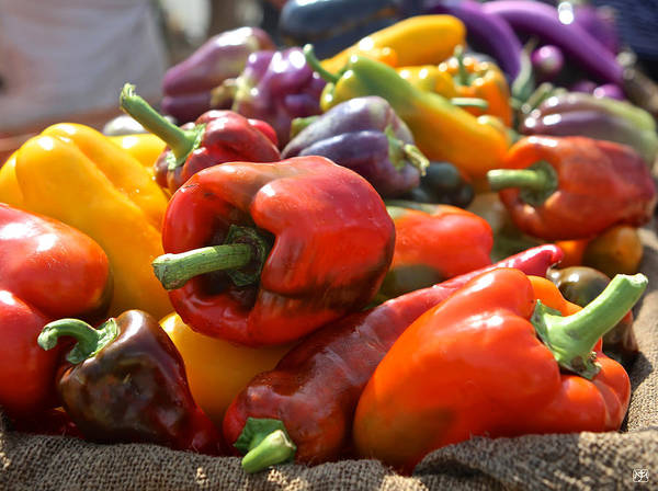 Photograph - Peppers by John Meader