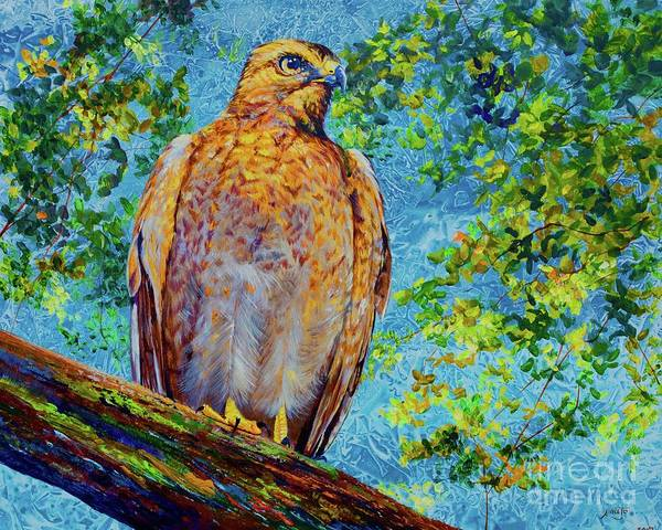 Wall Art - Painting - Perched Hawk by AnnaJo Vahle