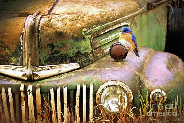 Wall Art - Digital Art - Perched On The Old Ford by Tina LeCour
