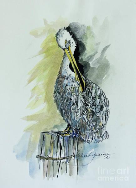 Perching Pelican Art Print