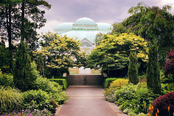 New Leaf Photograph - Perennial Garden Allee by Jessica Jenney