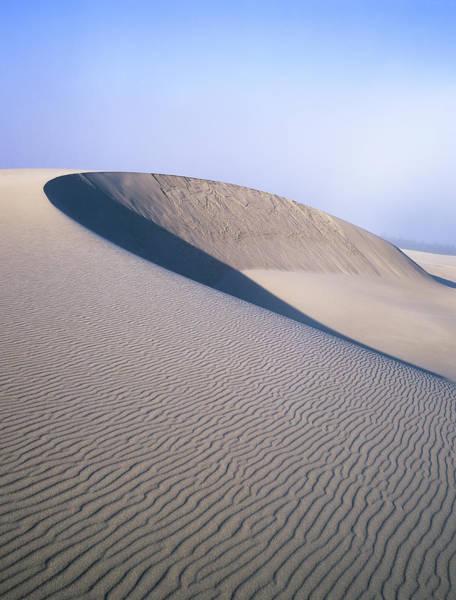Photograph - Perfect Dune by Robert Potts