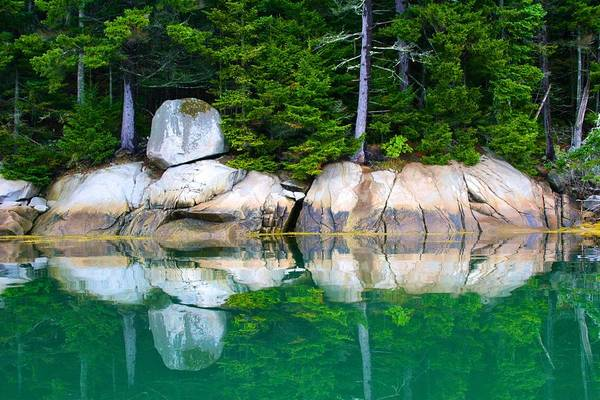 Photograph - Perfect Reflection by Polly Castor