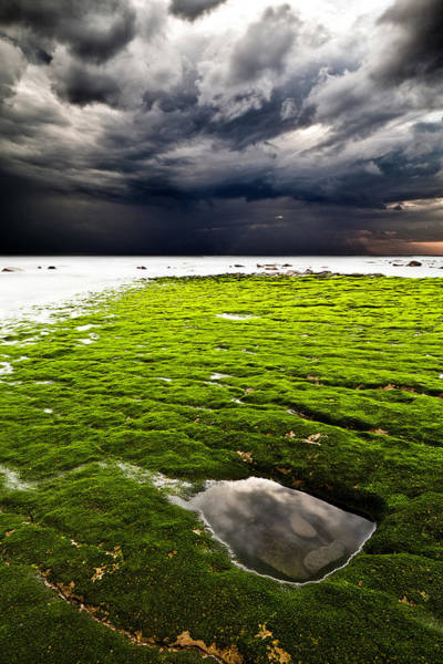 Wall Art - Photograph - Perfect Tempest by Jorge Maia