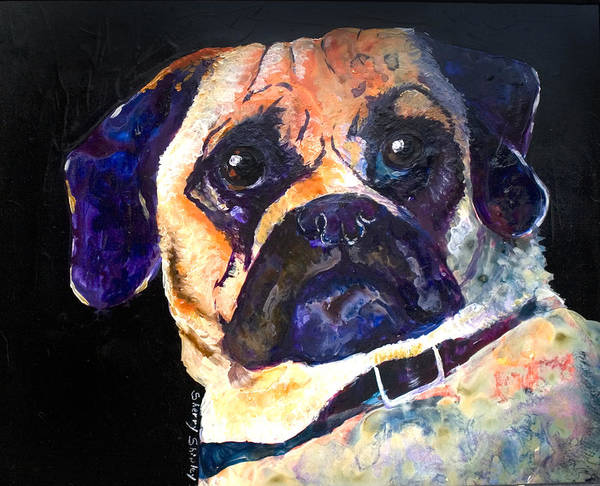Painting - Perflexed Puggle by Sherry Shipley
