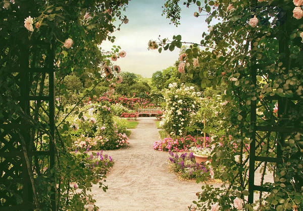 Photograph - Pergola View by Jessica Jenney