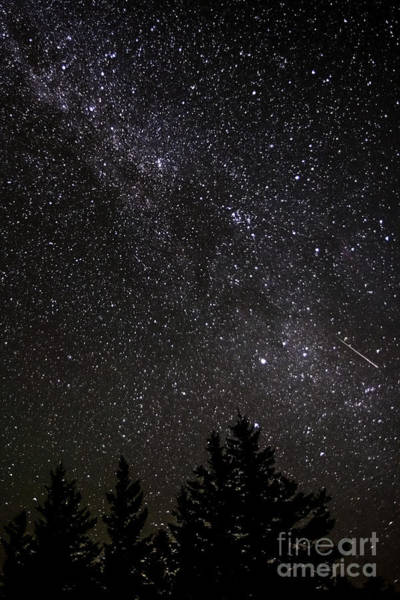 Perseid Wall Art - Photograph - Perseid Meteor And Milky Way by Thomas R Fletcher