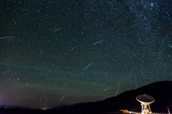 Perseid Wall Art - Photograph - Perseid Meteor Shower by Cat Connor
