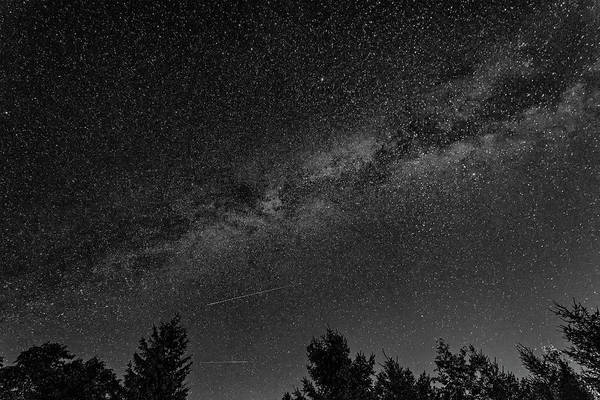 Perseid Wall Art - Photograph - Perseid Meteors And The Milky Way Bw by Steve Harrington