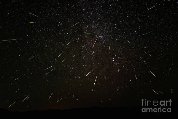 Photograph - Perseid Meteors by Mark Jackson