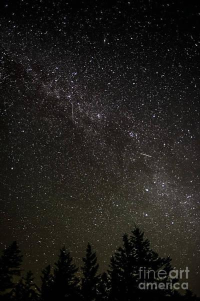 Perseid Wall Art - Photograph - Perseid Meteors by Thomas R Fletcher