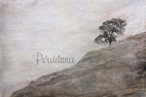 Digital Art - Persistance by Ramona Murdock