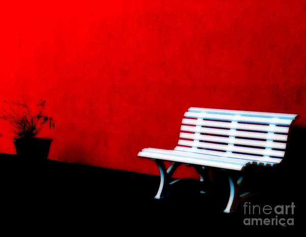 Wall Art - Photograph - Perspective In Bench White   by Steven Digman