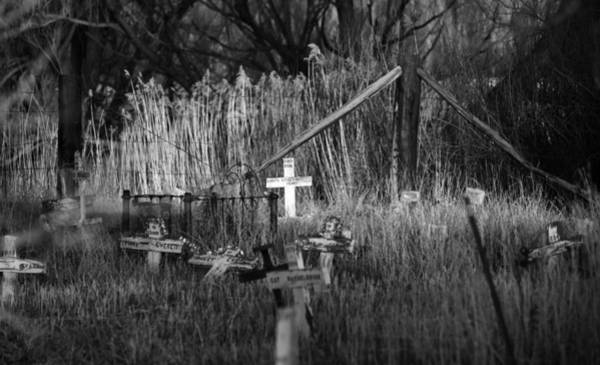 Photograph - Pet Cemetery by Rand