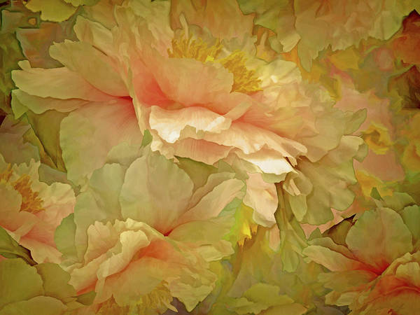 Mixed Media - Petal Dimension 21  by Lynda Lehmann