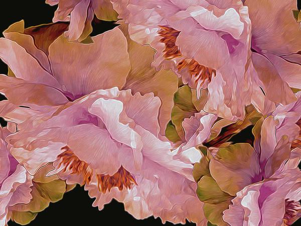 Photograph - Petal Dimensions 42 by Lynda Lehmann