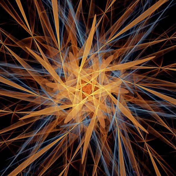 Wall Art - Digital Art - Petals - Fractal by SharaLee Art