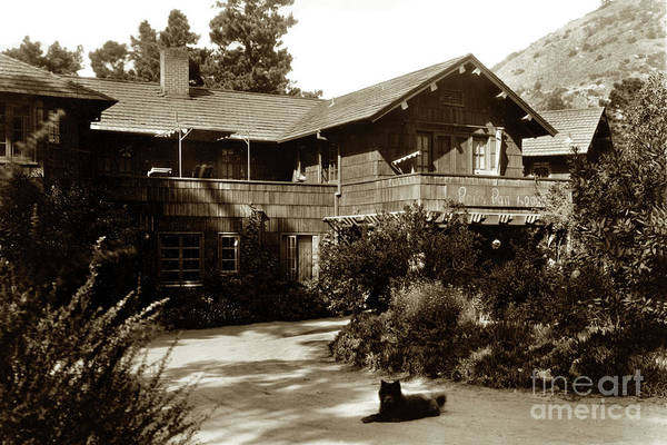 Photograph - Peter Pan Lodge  Was Located In The Carmel Highlands by California Views Archives Mr Pat Hathaway Archives