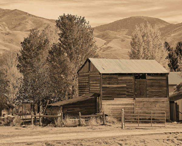 Photograph - Peterson Barn In Autumn Sepia by David King