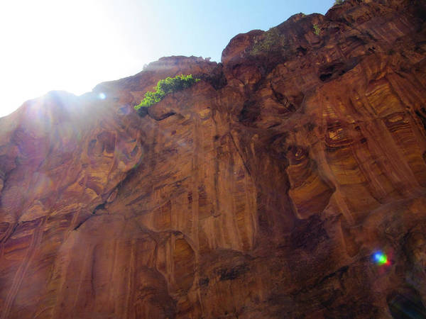 Photograph - Petra Heights by Donna L Munro