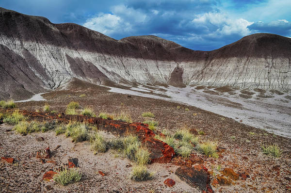 Photograph - Petrified Forest Arizona Badlands by Kyle Hanson