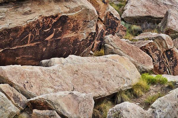 Photograph - Petrified Forest National Park Petroglyphs  by Kyle Hanson