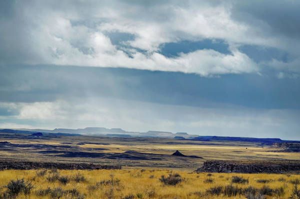 Photograph - Petrified Forest National Park Storm by Kyle Hanson