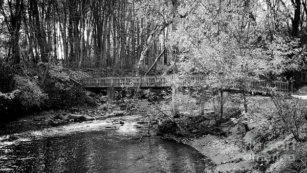 Photograph - Petrifying Springs Park Bridge  by Ricky L Jones
