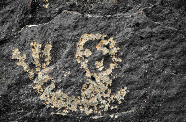 Photograph - Petroglyph National Monument Figure by Kyle Hanson