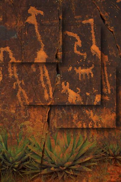 Photograph - Petroglyphs Agave by Bob Coates