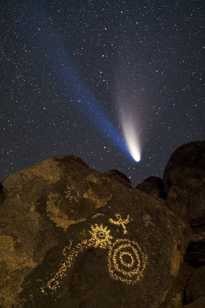 Photograph - Petroglyphs by Frank Zullo