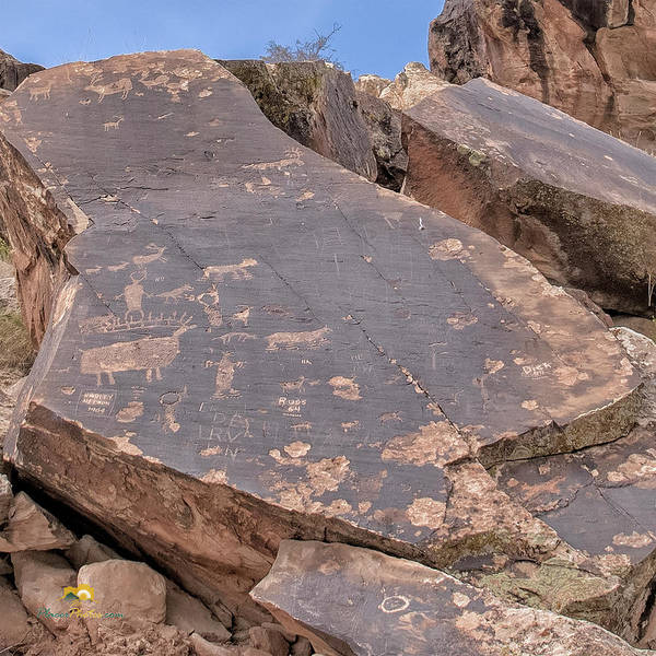 Photograph - Petroglyphs by Jim Thompson