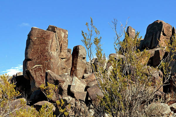 Photograph - Petroglyphs Of The Chihuahuan Desert by Nicholas Blackwell