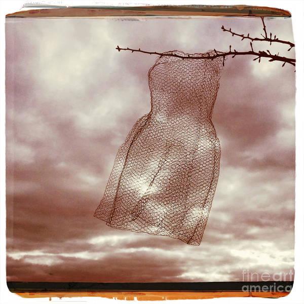Wall Art - Photograph - Petticoat by Linda Lees
